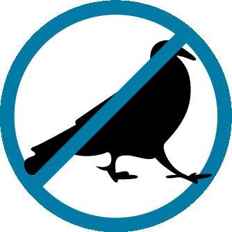 icona disinfestazione piccioni e colombi